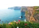 http://e-whizz.com/wordpress/index.php/tours/cliffs-of-moher-tour, dr-nanaplum-amazingbooksforchildren.com
